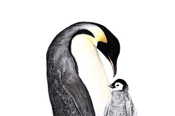 Original Emperor Penguin with Baby Drawing