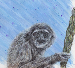 Gibbon Painting