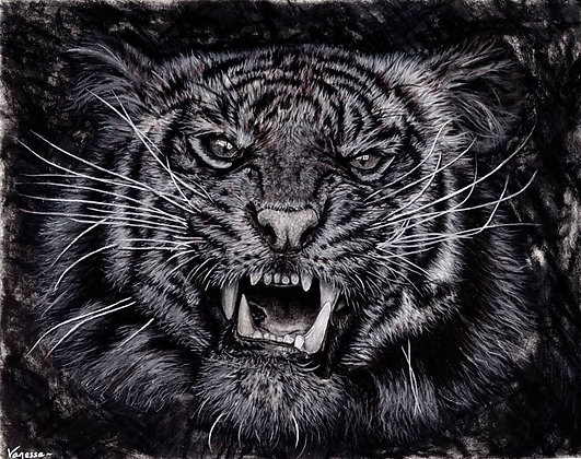 "ORIGINAL Hand Signed Sumatran Tiger Charcoal Drawing ""Eyes on the Prize"""