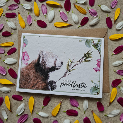 Plantable Collection Mother's Day Red Panda Card - No Waste Eco-friendly