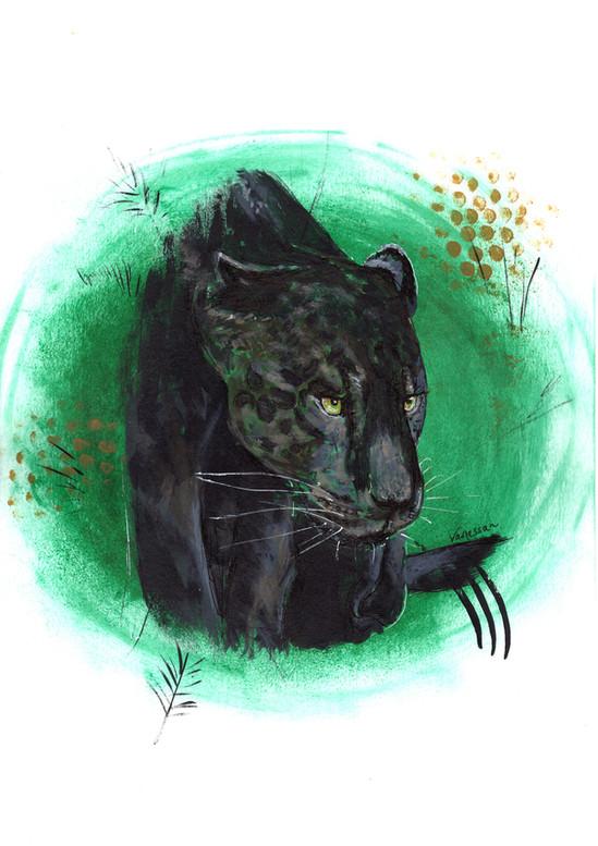 Black Melanistic Jaguar