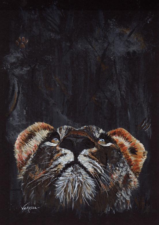 Lioness - proud lion mother