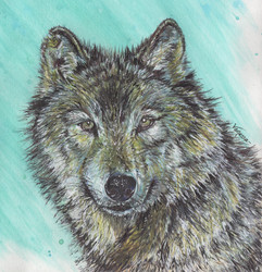 Wolf Painting in Mixed Media