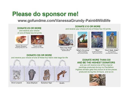 Please sponsor me and receive a free gift!