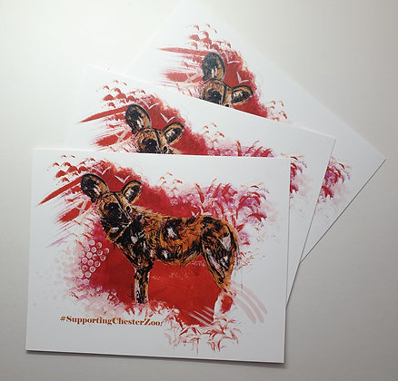 100% PROFIT TO CHESTER ZOO Print of Chester Zoo's African Wild Dog / Painted Dog