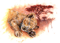 """SWEET DREAMS"" Baby Lion Cub Sleeping"