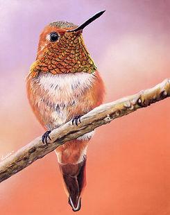 Humming Bird resized (2).jpg