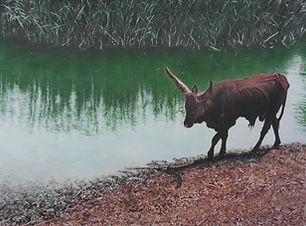 023 Ankole-Watusi Longhorn Bull Painting