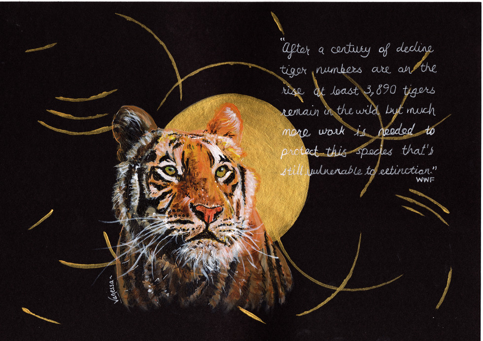 Tiger with quote from WWF