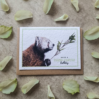 "Plantable Collection Red Panda ""Pand-tastic Birthday"" Card No Waste Eco-friendly"