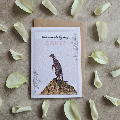 Plantable Collection Meerkat Celebration Card - No Waste Eco-friendly