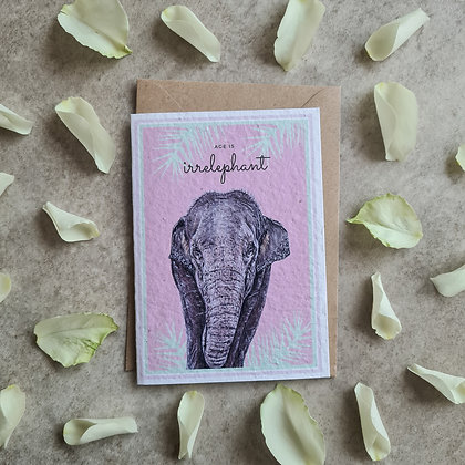 Plantable Collection Elephant Birthday Card - No Waste Eco-friendly