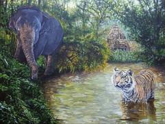 Sumatran Tiger with Asian Elephant