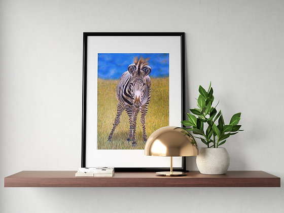 Grevy's Zebra Painting  A3 Lithographic Print