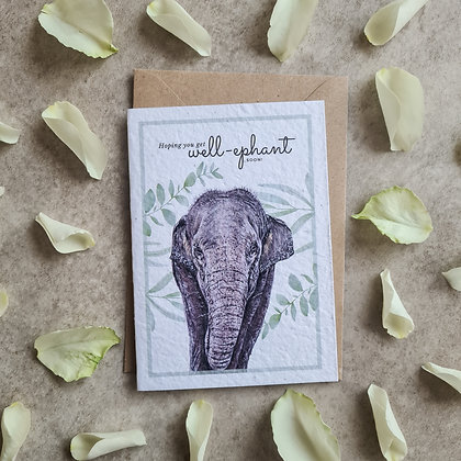 Plantable Collection Elephant Get Well Card - No Waste Eco-friendly