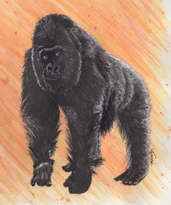 Male Silverback Gorilla Painting