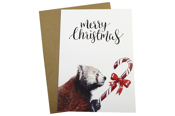 Red Panda with Candy Cane - Luxury 350gsm Christmas Card