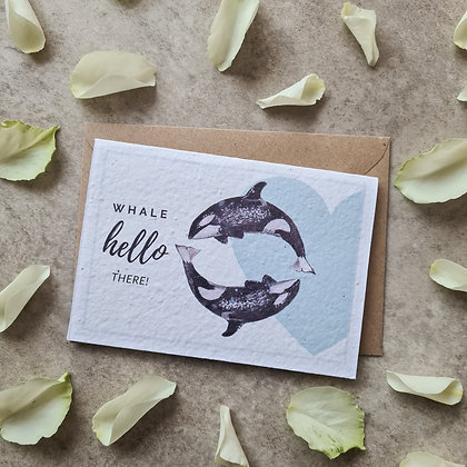 "Plantable Collection Orca ""Whale Hello There!"" Card - No Waste Eco-friendly"