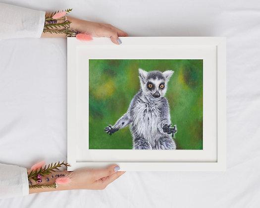 Ring-tailed Lemur A4 Giclée Print