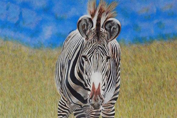 Original Framed Painting Grevy's Zebra