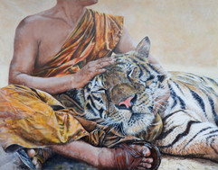 """REST YOUR HEAD"" Bengal Tiger with Monk"
