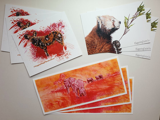100% PROFIT TO CHESTER ZOO Print of Chester Zoo's Elephant Herd