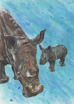 Mother Rhino with Baby