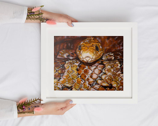 Corn Snake Painting  A4 Lithographic Print