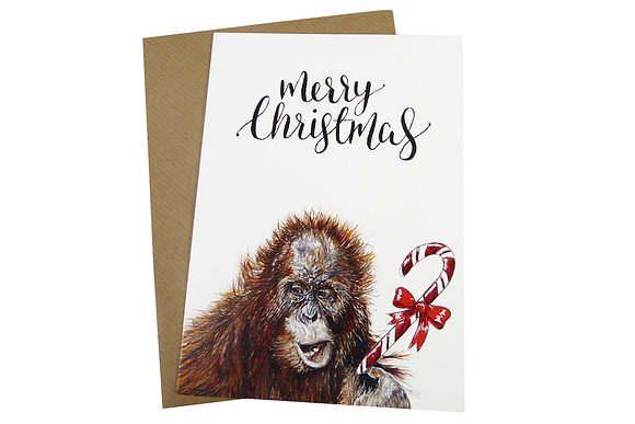 Sumatran Orangutan with Candy Cane - Luxury 350gsm Christmas Card