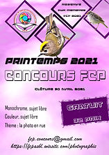 affiche concours 2.jpg