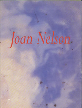 Joan Nelson: New Paintings