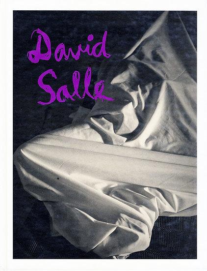 David Salle: Photographs 1980-90