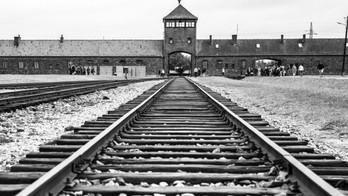Prima regola di Auschwitz