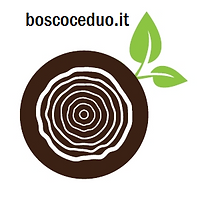 boscoceduo.png