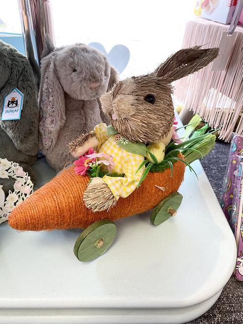 Bristle Bunny in Carrot Car