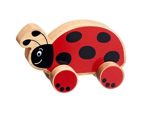 Lanka Kade Ladybird Push Along