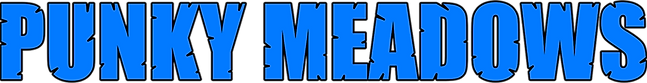 Punky Meadows LOGO 1000px cropped.png