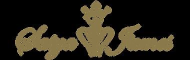 Satya logo_gold.png