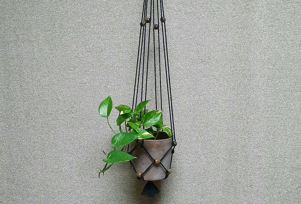 Kasvitar Amppeli  -musta/ruskea