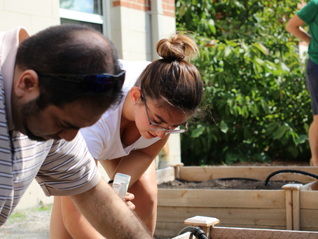 Old Dominion's gardening community continues to grow