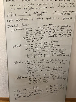 how-i-started-my-business-flamur-shala-fokus-strategie-matematika.jpg