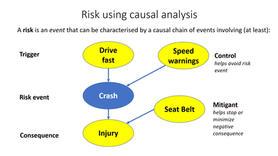 Causal reasoning and behaviour