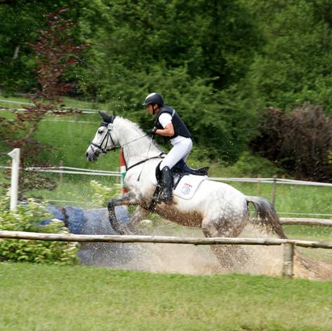 Event/Jump/Show Saddles