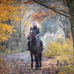 Endurance/Trail/Western Saddles