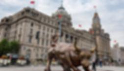 bull shanghai.jpg