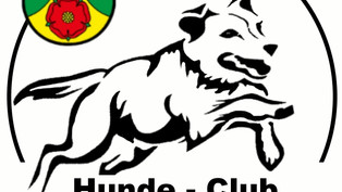 Bericht, 50 Jahre HCE in den Obersee Nachrichten