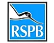 rspb.webp