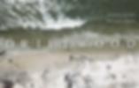 Driftwood_subtitle.png
