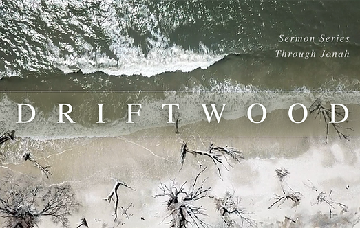 Driftwood_subtitle.png
