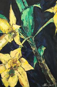 Branch of Yellow Bromelias